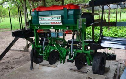 Farmers' field school promotes crop diversification – sweet potato, cassava, pumpkin targeted