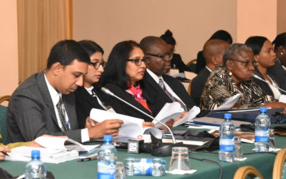 Delegates at Hague conference seek clarification on Child Abduction Convention
