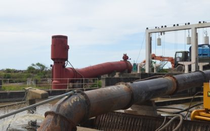 Sole sourcing for Trafalgar pumps' rehab was necessary – NDIA Head