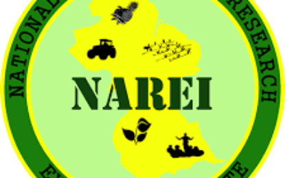NAREI's Board to serve two years
