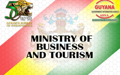 Business Ministry's Strategic Plan to emphasise developments in manufacturing sector