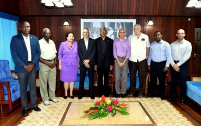 M&CC and private sector joint committee to be established – President David Granger