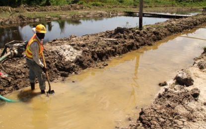 No more mud dam for 'E' Field, Sophia