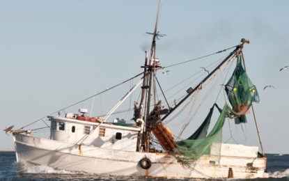 Increased monitoring in fisheries sector to ensure all vessels comply with laws