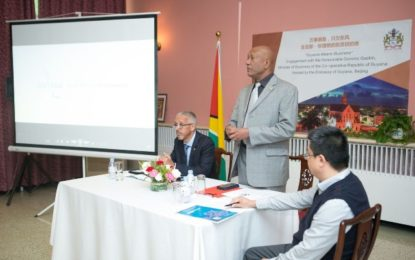 GUYANA SEEKS SUSTAINABLE PARTNERSHIP WITH CHINESE BUSINESS SECTOR