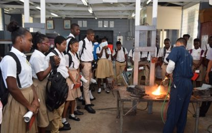 Young people urged to pursue vocational careers