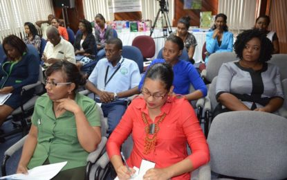 UNDP strengthening Guyana's capacity to realise Rio Conventions