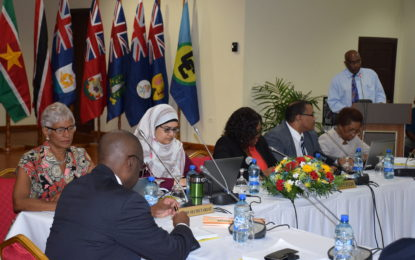 COTED meeting urges partnerships with private sector to support region's economic growth