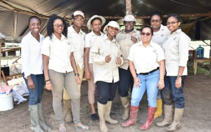 Women blazing their own trail in mining sector