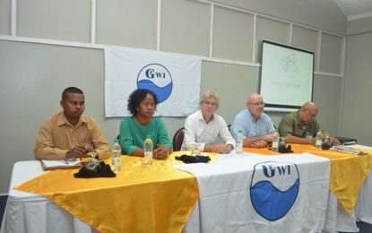 GWI to improve quality of water supply – engineers being trained