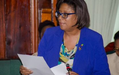 ICT Initiatives to transform Guyana in 2017 – Minister Hughes tells National Assembly