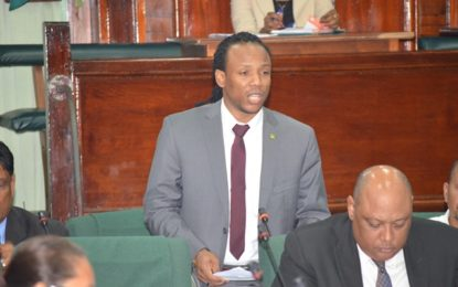 Opposition MPs presentation lack substance – Figuiera