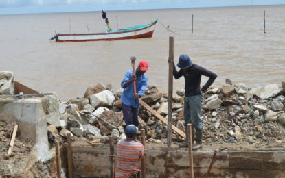 Sea, river defence works to heighten this year