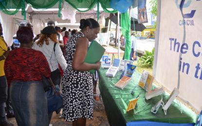 Education Ministry hosts annual Literary Street Fair