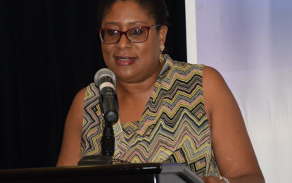 Public, Private Partnership needed in the ICT Sector- Min Hughes