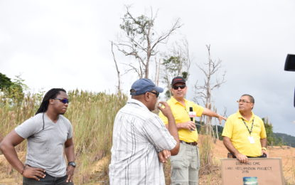 Successful land reclamation project to set standard for future practice