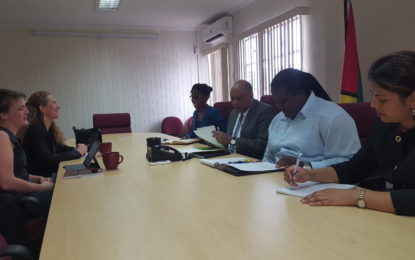 Minister of Natural Resources discusses Guyana's renewable energy prospects and preparation for oil production with Norway team