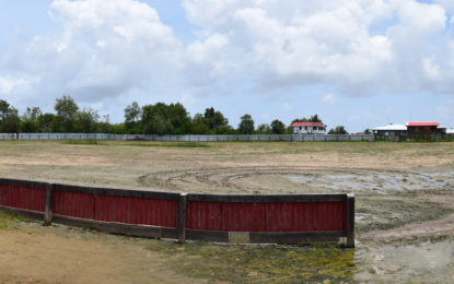Ground enhancement project moving apace – Region Six grounds examined in mapping cluster