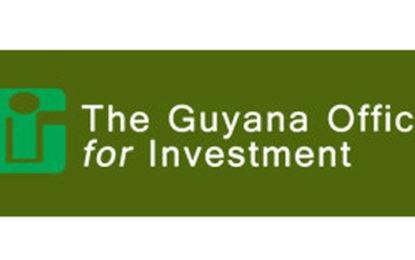 GO-Invest's audit report reveals financial irregularities
