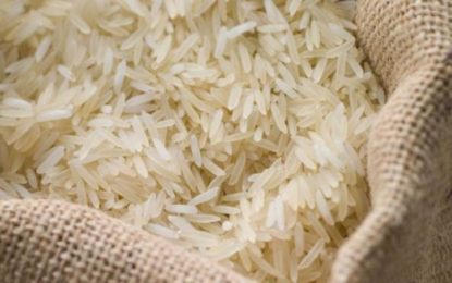 Guyana making strides towards Mexican Rice Market