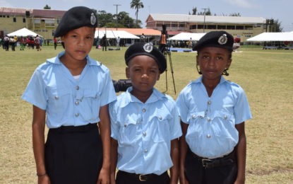 """""""A"""" Division Annual Career Day helping youths' to """"choose career paths""""-Commander Hicken"""