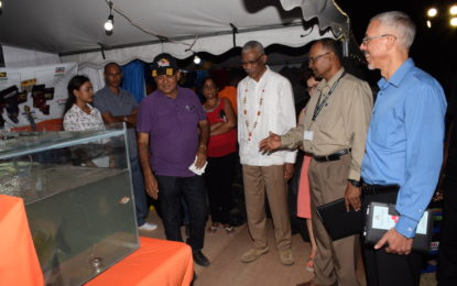 Essequibo ready for business -Small Business Bureau, Go-Invest offers assistance for startup business at Expo