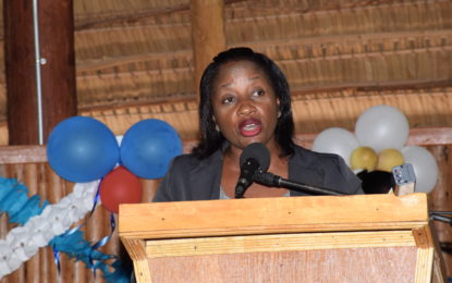 More collaboration needed for Midwives Association's development