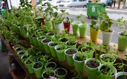 First of its kind farmers' market gets positive response