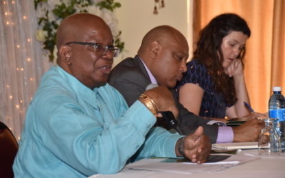 Guyana prepares fiscal plan to avoid resource curse