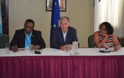 Private forestry operators' to be more efficient through FAO, EU-FLEGT project