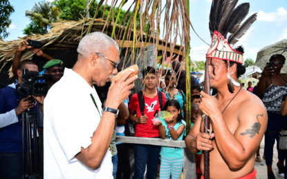 President calls on Indigenous communities to develop Village Improvement Plans  -at Heritage Village celebrations at Pakuri Village