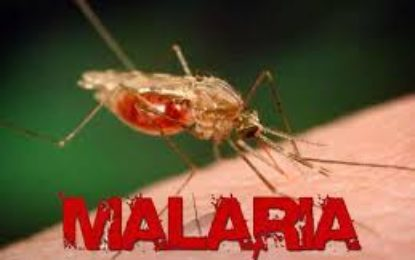 Guyana will continue to offer malaria treatment to Venezuelans