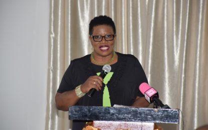 Workshop seeks to deliver plan to facilitate enterprise development