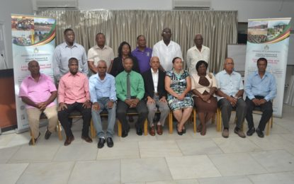 Municipalities call for more interactive and informative engagements with Ministries