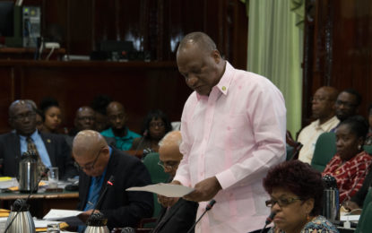 """State Minister condemns """"mischievous"""" Guyana Times article"""