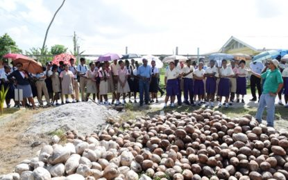 Agriculture students given tour of Hope Coconut Estate