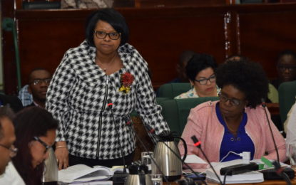 Public Health Budget approved late Thursday evening