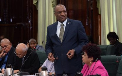 Government has gone to 'granular' levels to explain its vision- Minister Harmon