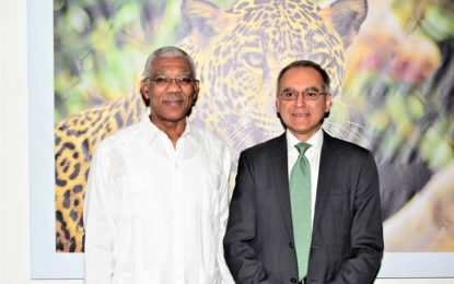 Environmental economist pays courtesy call on President, Minister of State