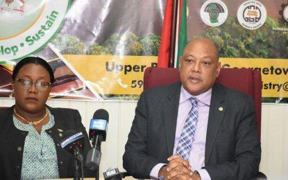Management of interior roads returns to GGMC