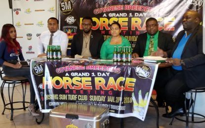 Sports Commission supports all-local horse race meet