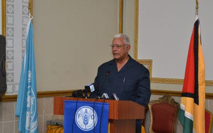 'GuySuCo not under Ministry of Agriculture's purview' – Min. Holder