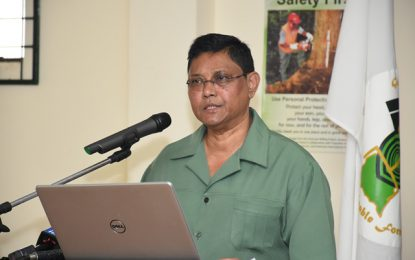 'Headway' on greenheart ban expected this year – GFC Commissioner