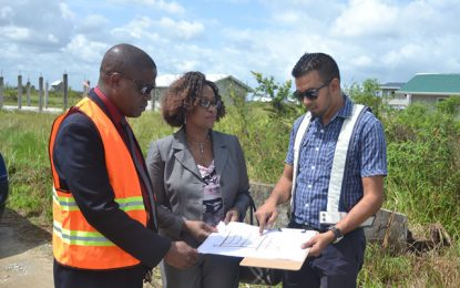 CHPA to allocate 1,000 serviced lots in 2018