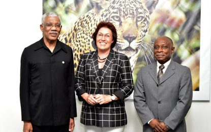 President Granger receives courtesy call from outgoing New Zealand Ambassador