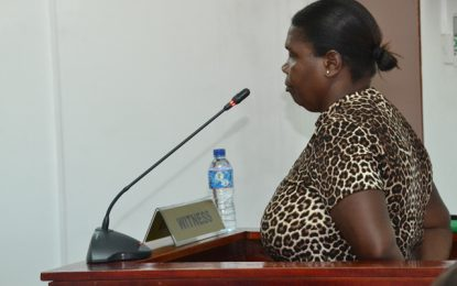 More relatives testify at Lindo Creek's CoI