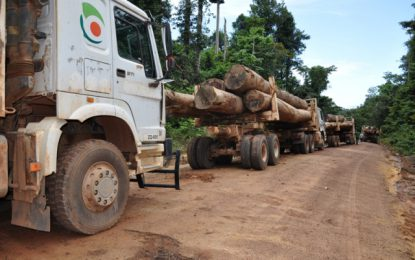 Forestry Commission anticipates more markets in 2018