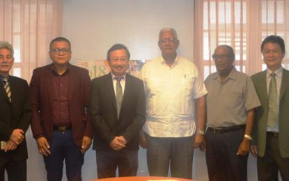 Large- scale investment in Palm Oil for Guyana – trees can produce 4 tonnes of crude oil per hectare annually