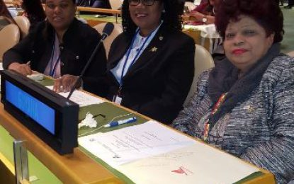 Minister Ally Addresses United Nations on Behalf of CARICOM
