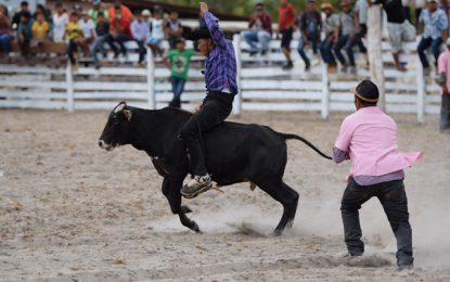Sand Creek Rodeo making strides